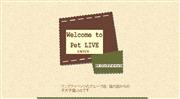 東京都のライブカメラ:ペットショップ「東京ワンク」の店内にいる子犬の今の様子